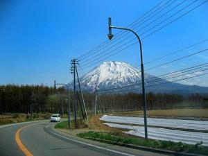 北海道の自然の中で