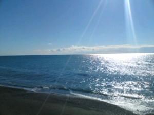 浦賀の穏やかな海