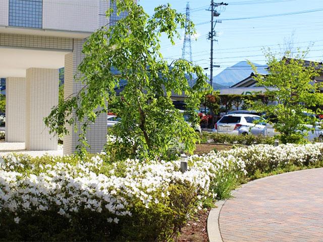 画像:当院の風景 病院内外6