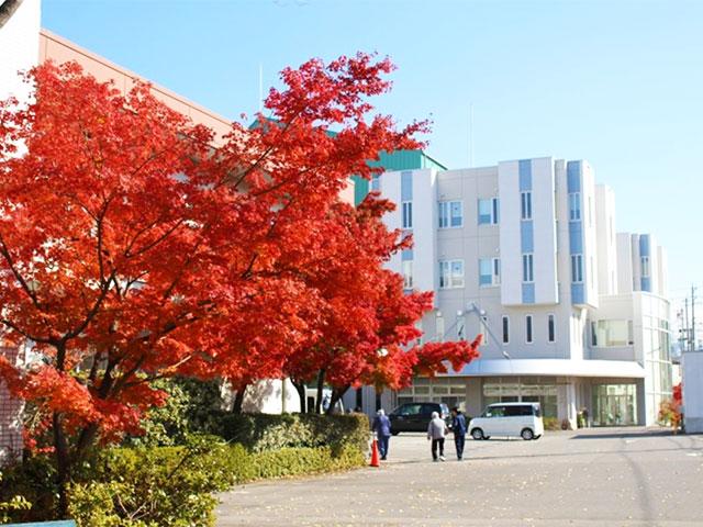 画像:当院の風景 病院の四季3