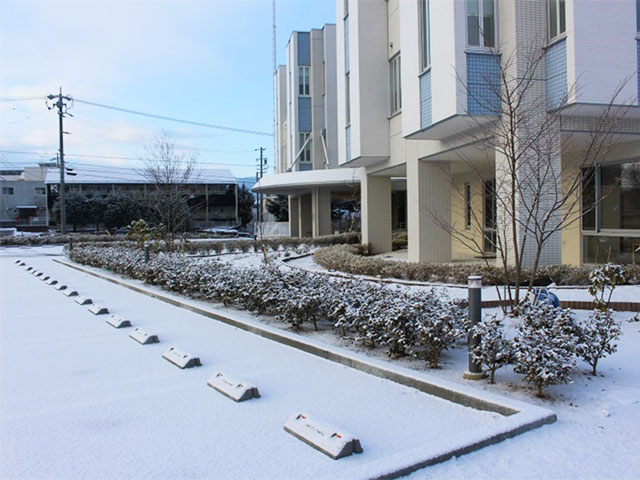 画像:当院の風景 病院の四季4